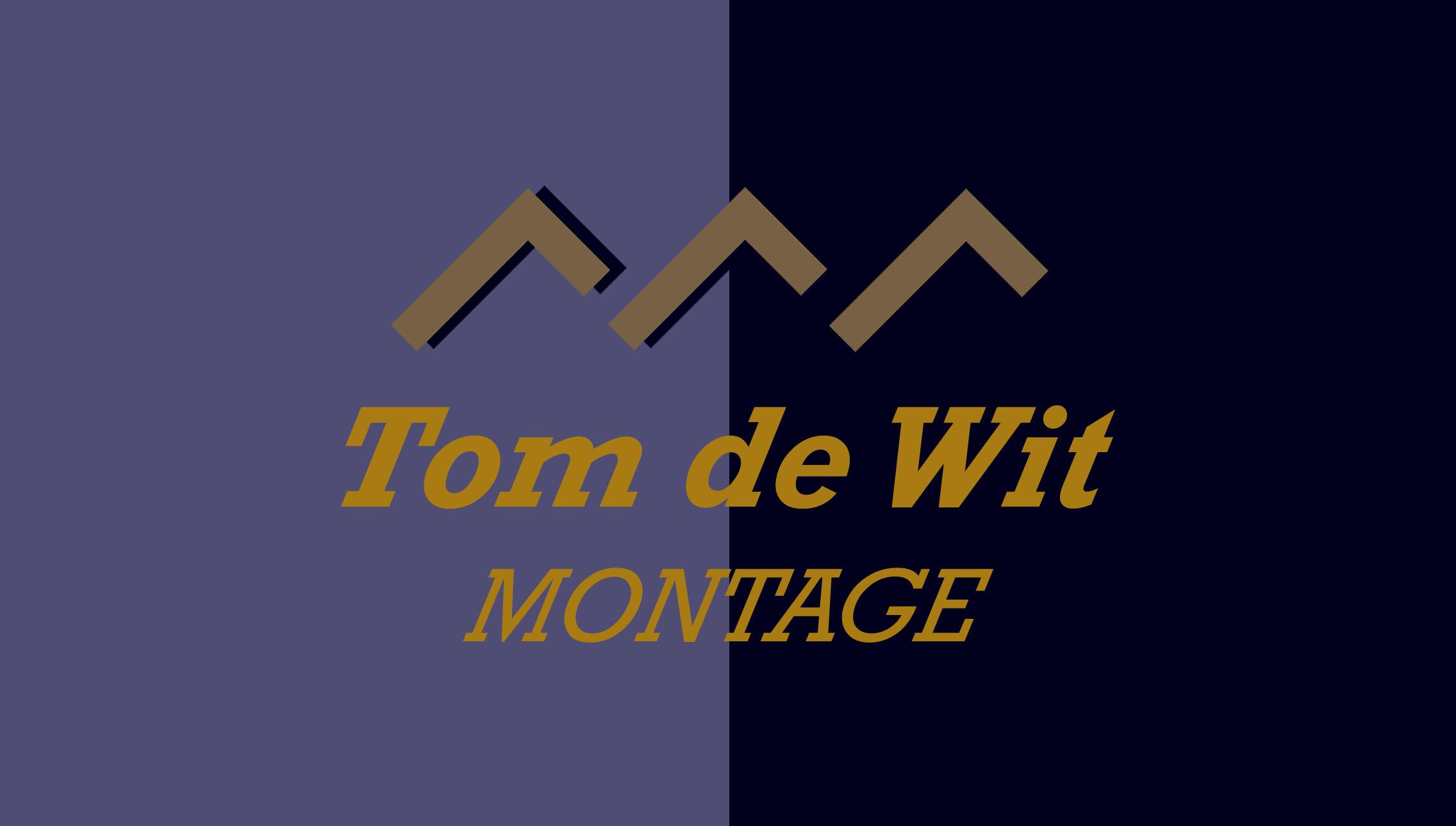 Tom de Wit
